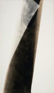 Alison Rossiter, AR-4-0186 Photogram on expired photo sensitive paper. © Alison Rossiter