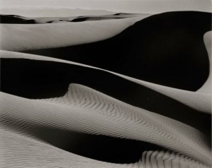 Bruce Silverstein - Edward Weston - Dunes Oceano 2