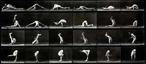 Gymnast, Eadweard Muybridge. Image courtesy Laurence Miller Gallery