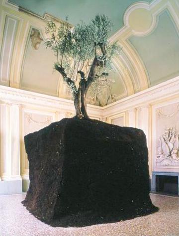 Maurizio Cattelan - Olive Tree
