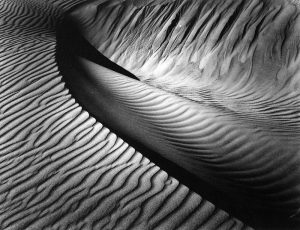 Brett Weston, 'Dune' Ca. 1930, Printed Ca. 1980. Courtesy Steven Kasher Gallery, New York. AIPAD