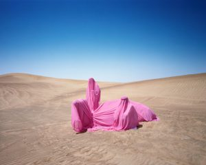 Scarlett Hooft Graafland, 'Still Life with Camel', 2016, chromogenic print. © Scarlett Hooft Graafland, Courtesy of Flowers Gallery London and New York. AIPAD